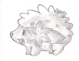 Shaymin Drawing by duelistshdow123