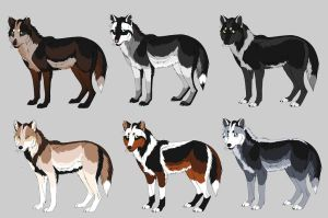 Wolf Adoptables :CLOSED: by Okami-Heart