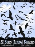 GIMP Flying Birds Brushes by Project-GimpBC