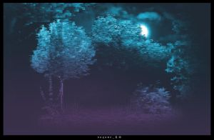 Flow [Backdrop 4] - Forest by NagamePed