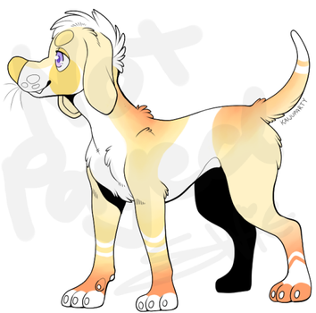 Doggo Adopt (OPEN) by ConfusionsChill