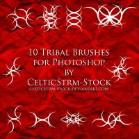 Tribal Brushes by CelticStrm-Stock by CelticStrm-Stock