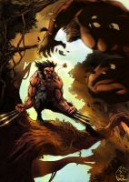 Wolverine vs Sabertooth Colors by adr-ben