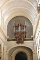 Organ by Cat-in-the-Stock