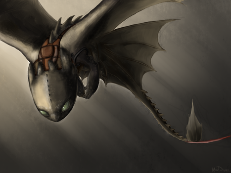 Toothless - redraw by MeerDragon