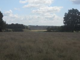 Petworth House and Park 122 by VIRGOLINEDANCER1