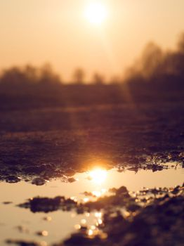 Sun Reflection by Marces-Ice