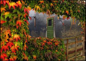 Window to Autumn by parallel-pam
