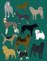 12 ADOPTABLES 2012 by chihuahua4446