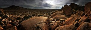 Mojave Desert by IvanAndreevich