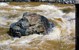 Large Boulder in the Animas River by DamselStock