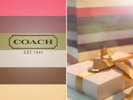 COACH by thehonor2