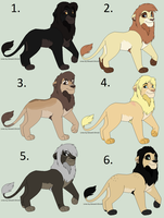 Male Lion Adopts Name your price (Closed) by Sukida-Adopts