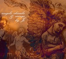 Angels And Wings Brushes by gojol23