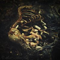 Dead II - I Eat You Alive. by silent-scream-throe