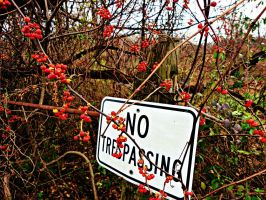 No Trespassing by TemariAtaje
