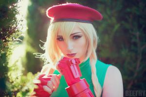 Street Fighter - Cammy - 02 by beethy