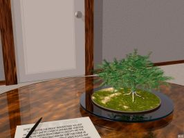 Office Bonsai by xni