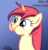 Bootcamp Day 12: Funny Face by Sintakhra