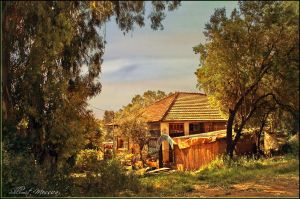 Old wood house by ShlomitMessica