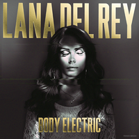 Lana Del Rey - Body Electric by other-covers
