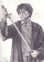 Harry Potter by RavensHaelo