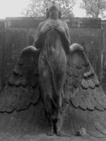 An Angel In Black by Helvitis