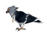 Harpy Eagle Adopt! (OTA, CLOSED) by KillerKoiStar