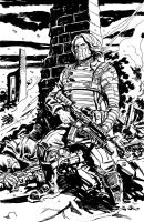 Winter Soldier by deankotz
