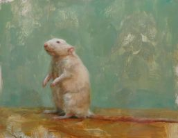 rat by snellynell
