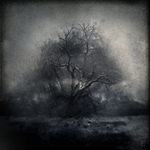 The Celestial Flood by intao