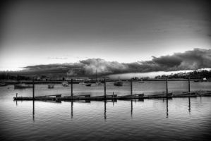 harbor black and white by coog7444