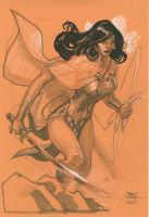 WONDER WOMAN SDCC 2014 by TerryDodson