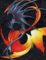 The Dragon and the Phoenix by fire16