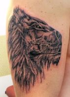 Black and grey lion by IAteAllMyPaste