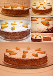 Crashed nuts in My Carrot Cake by ShillMynara