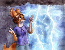Electrical Storm by foxyfennec