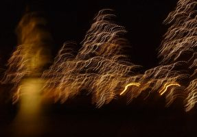 Chritmas Time at 'Prato della Valle' by volantchat