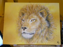 Male Lion by RozThompsonArt