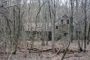The Forgotten House in the Wood by doe0110