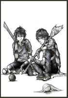 James and Sirius quidditch by JACKIEthePIRATE
