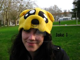 Jake Cosplay Hat by ChoCoBa