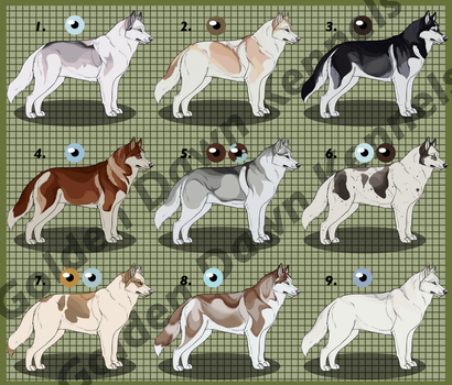 Husky Import Sheet 1: CLOSED by 18smiths