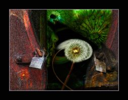 Sow Many Seeds so Few Keys by x-pyre12