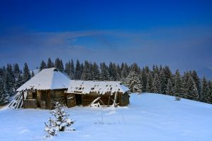 On cottage by lica20
