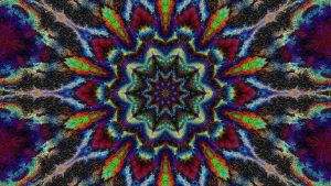 Mandala Mayhem 7b by Don64738