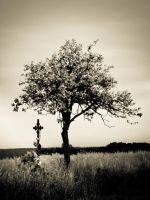 Crucified by Sudlice