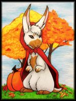 Lil' red bunny hood by HollieBollie