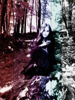 In the Forest :: 2 by Elyriah