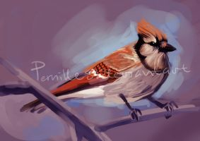 Orange-jay by Pernilles